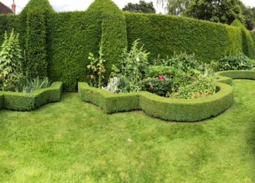 Topiary artistry in the garden