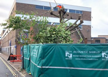 Tree removal from a sensitive location