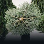 St Helena Hospice Christmas Tree-cycle