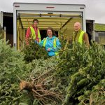 A Tree-mendous Weekend for St Helena Hospice