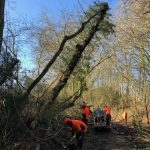 call-outs as trees across the county blew over